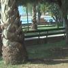Lungomare di Salerno, il Comune avvia la derattizzazione
