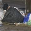 Salerno – Ente d'ambito rifiuti, eletto presidente Coscia
