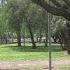 Parco del Mercatello a Salerno nel degrado