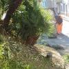 Rifiuti in strada e degrado, intervento del Comune di Salerno in via Gonzaga e al Torrente Orefice