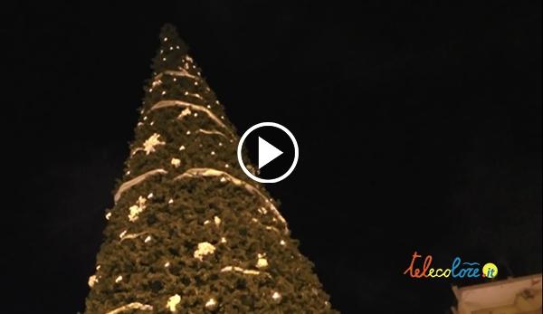 albero di natale salerno